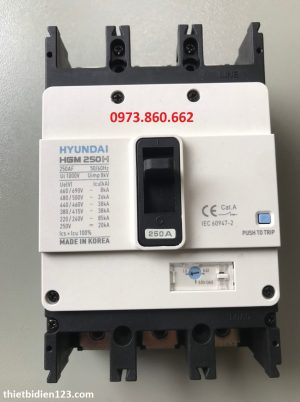 Aptomat MCCB 3P 250A